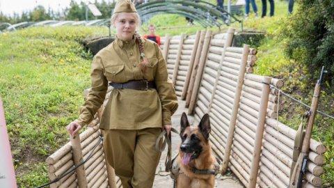 Подвиги служебных собак покажут в музее