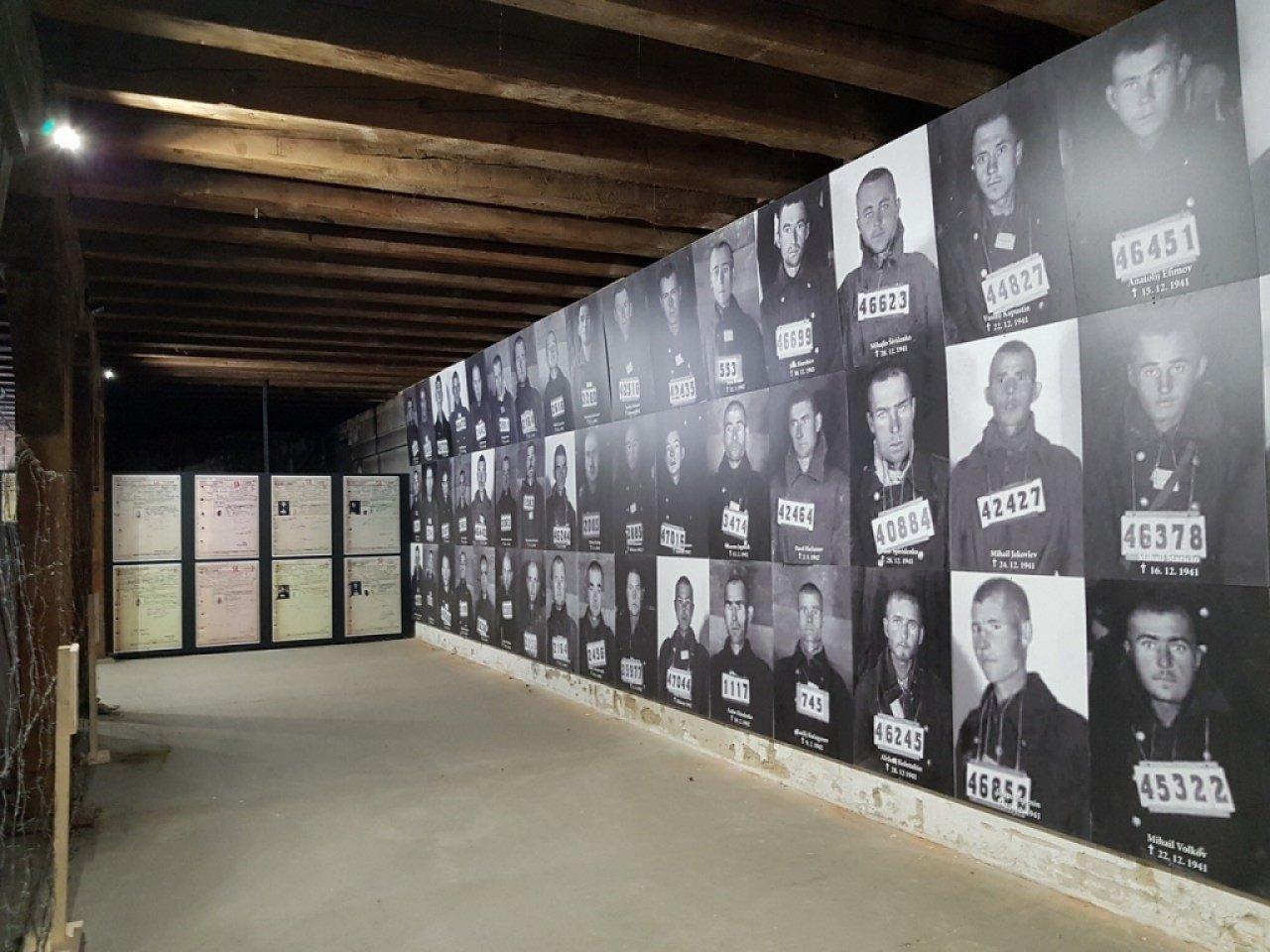 Музей представит улики нацистских преступлений